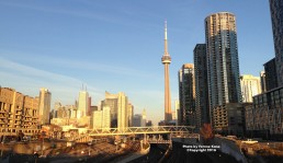 Downtown Toronto East View